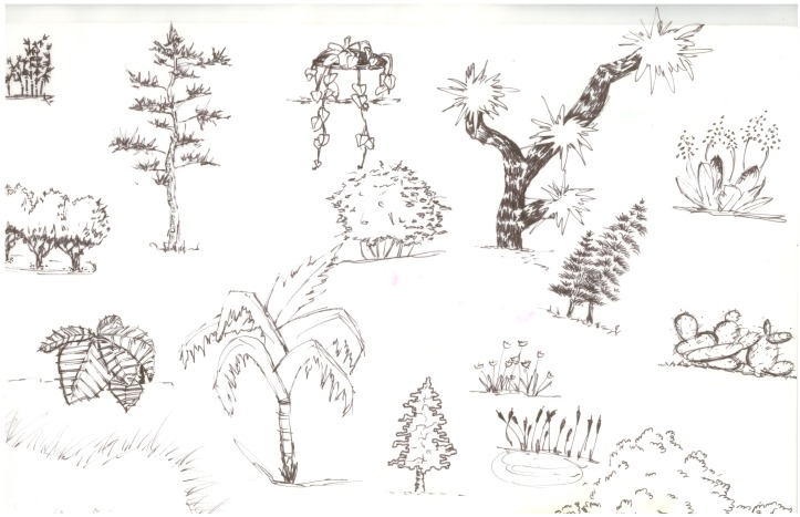 Practice Shrubs, pen