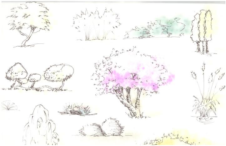 Practice Trees, pen 2