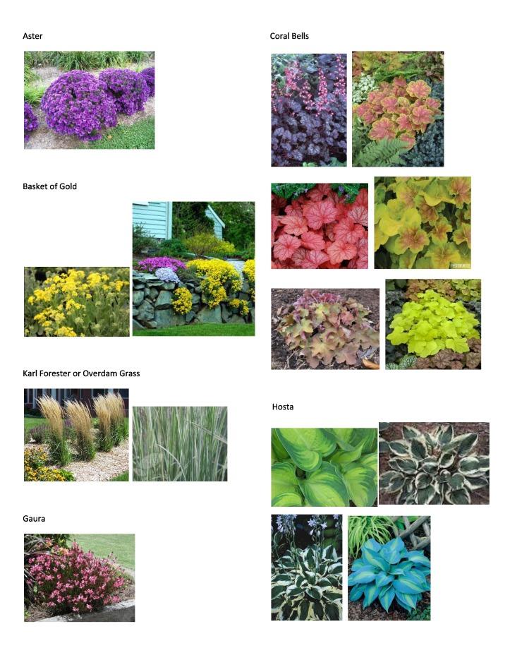 P&T Plant Picture List 5