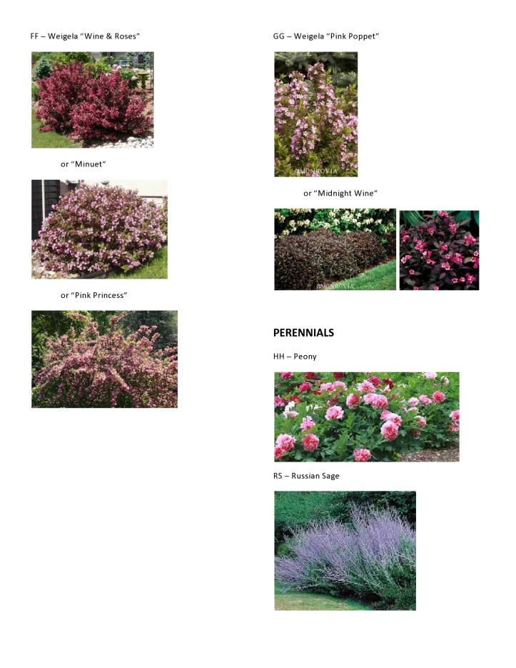 Dawson - Master Plant Pics 6