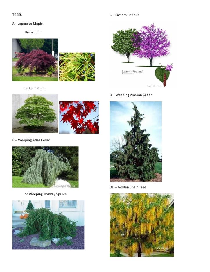 C&V Hinman - Plant Pics 1